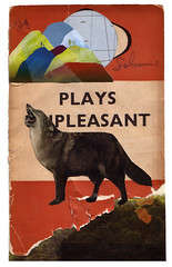6 & 10 (lillianna) Tags: house art collage project wolf pack lone coop scavenger pastlife wildbeast