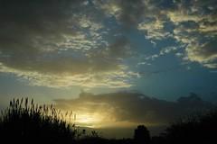 Renzo this is for you... (sergiopillai) Tags: sardegna sunset red white black water yellow sunrise dark sand mediterraneo nuvole desert blu dune salt natura cielo sole albero acqua rosso azzurro amore vacanze vita coucherdesoleil isola allegria sarrabus campidano goldstaraward tramontidisardegna