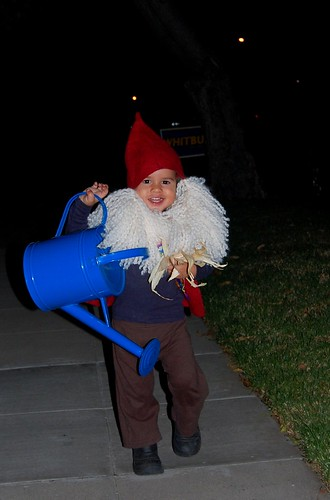 Trick or Treating Gnome!