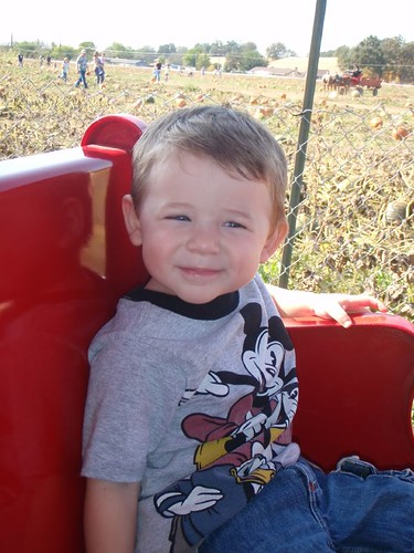 Train around the Pumpkin Patch