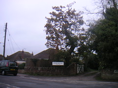Wareham, on a Sunday Walk (adrianh) Tags: uk dorset wareham