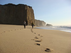 MartinsBeach_2007-101 (Martins Beach, California, United States) Photo
