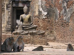 Les gardiens du temple (mimite1958) Tags: religious vacances asia buddha monkeys asie thailande boudha singes hollidays