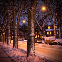 Cold Is A Relative Concept (bryanscott) Tags: street winter cold winnipeg manitoba hdr wolseley