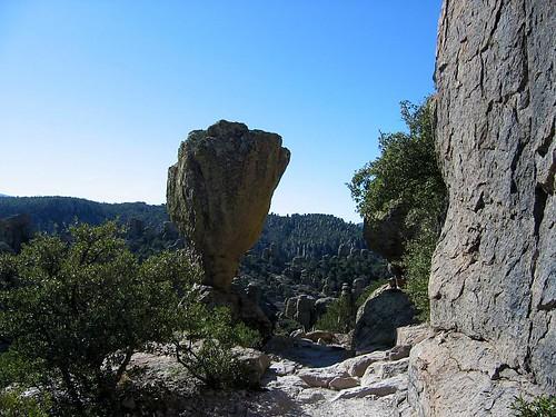 chiricahua-11