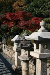 """IMG_5230 (Steve-kun) Tags: autumn japan shrine jp 日本 flickrcom flickrjp 日本 """"日本 flickrflickr jpcom"""