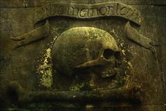 Skull & Crossbones (davydubbit) Tags: cemetery scotland edinburgh westend skullcrossbones