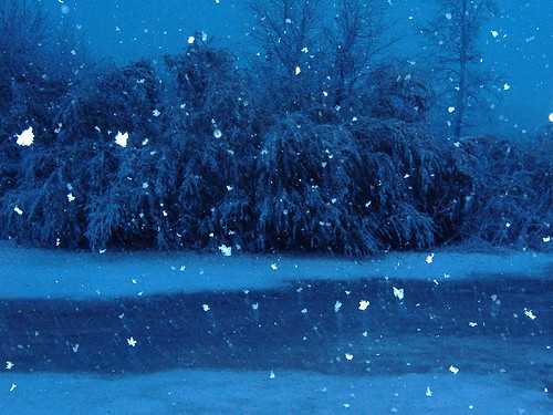 Fwd: Snow Pic