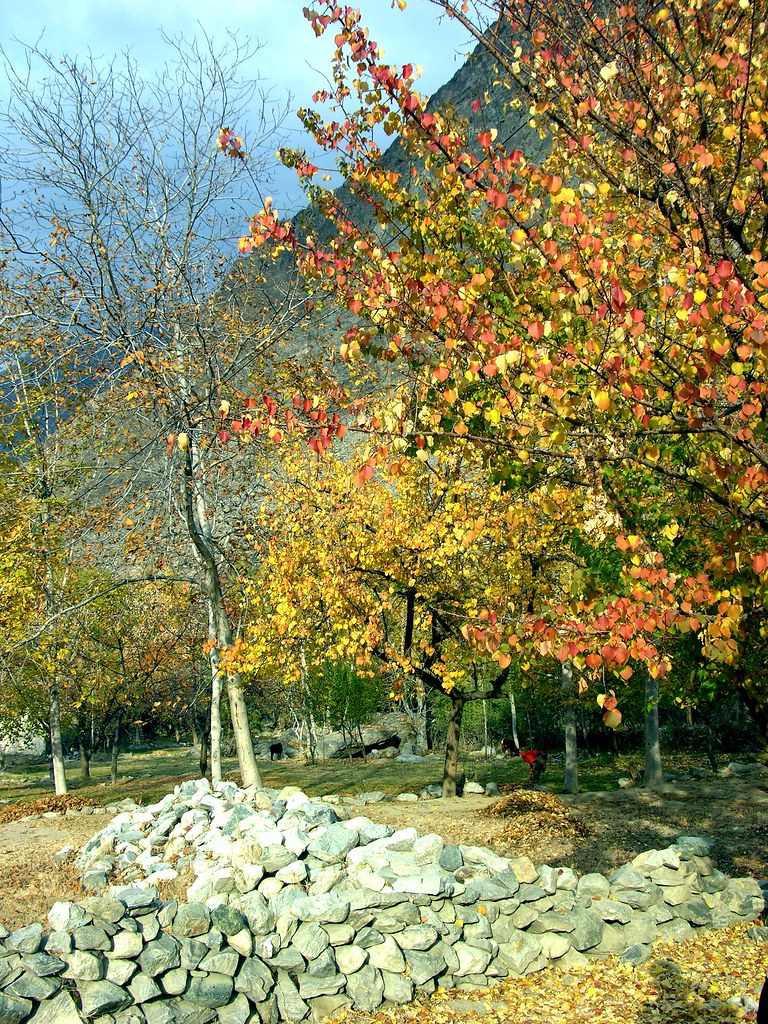 3102257614 a13da77e97 b - Stunning Beauty Of Hunza Valley Pakistan