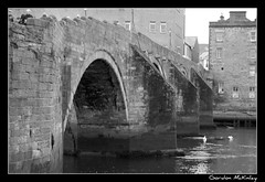 Day 357/366 - Old Bridge, Ayr (Gordon McKinlay) Tags: bridge blackandwhite bw oneaday d50 geotagged scotland nikon photoaday dslr ayr pictureaday ayrshire oldbridge project365 auldbrig gordonmckinlay gordonsramblings project365357 221208 project3662008 gmckinlay dec222008 project365221208 oldbridgest geo:lat=55464811 geo:lon=4629173