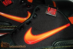 Zoom LeBron 6 World Tour