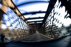 Ticino Bridge (Gianluca -- 2KPhotos.com) Tags: auto bridge car canon drive ticino iron view ponte fisheye vista 5d 15mm f28 ef ferro canon15mmf28 crivex excapture 2kphotoscom