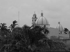Archivo Tlacotalpan - Agosto 2008 (132)