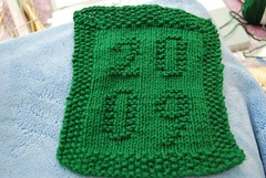 dishcloth 2009