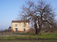 IMGP9280 (gzammarchi) Tags: casa italia natura campagna albero pietra paesaggio rudere pianura cdp portonovo camminata itinerario medicinabo