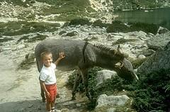 Randonnée au lac de Melu : Laurent et l'âne