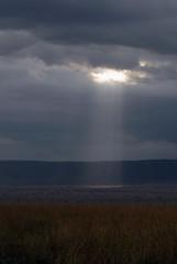 Sunray 1, Maasai Mara, Kenya