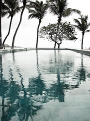 pool ( patric shaw) Tags: patricshaw copyrightpatricshaw2010allrightsreserved