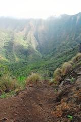 (donrookie) Tags: trail kauai napali kalaulau