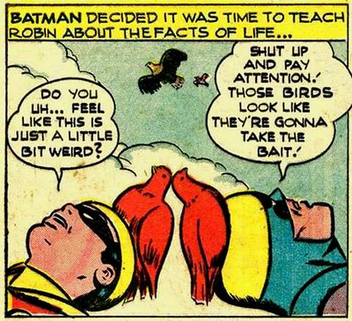Batman Teaches Robin the Facts of Life