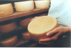 Fabrication et affinage des fromages