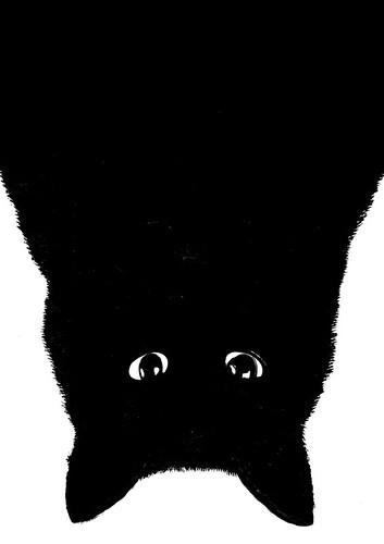 Le Gun cat