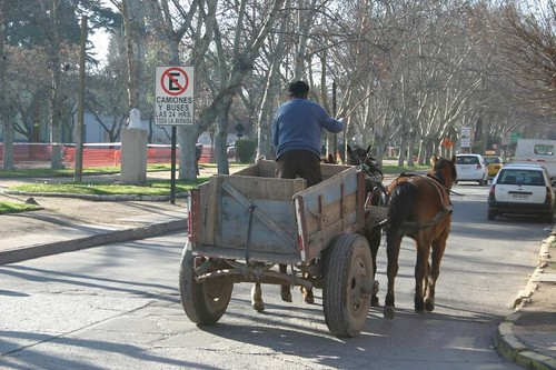 Los Andes horse cart - Chile.