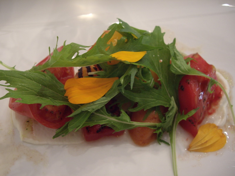 Tomato salad with burrata and grilled summer fruit