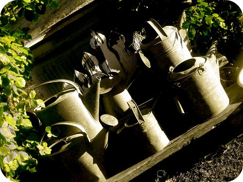 watering cans by cra612.