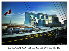 Happy Blue Monday - LOMO style!   :-) (Dave the Haligonian) Tags: canada lomo lomography novascotia flag dime halifax bluenose fauxlomo fauxmo lunenburg hbm bluemonday happybluemonday lomomonday