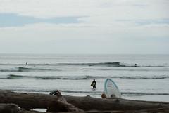 surfer's view (dolanh) Tags: oregoncoast oswaldweststatepark shortsandsbeach