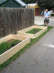 #272 - New Raised Beds