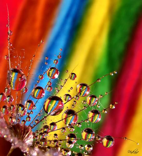 colors of rainbow. Nevena Uzurov - Rainbow colors