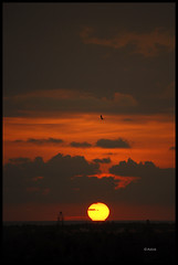 SunSet@ITPark (Ashok A Menon) Tags: sunset kerala vr trivandrum technopark 55200mm nikond200 anawesomeshot