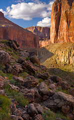 Nakoweep Trail (Suzanne AZICIT) Tags: arizona sports river grandcanyon photographers rafting coloradoriver occupations garyladd photocontesttnc08