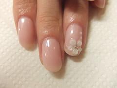 081015 ピンクお花1