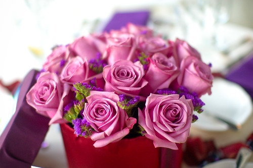 Dusty Pink Roses