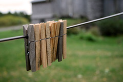 Clothespins Obsession (Caroline Forest Images) Tags: snow fall leaves countryside farmland easterntownships waysmills
