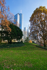 Urban Nature (Philipp Klinger Photography) Tags: park blue autumn trees sky urban tree green fall nature skyscraper germany deutschland leaf europa europe hessen frankfurt herbst highrise grn leafs philipp hochhaus hesse wolkenkratzer klinger colourartaward dcdead