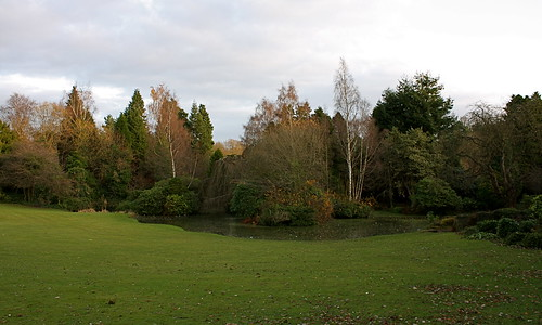 Ross Hall Park Pond