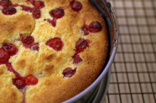 cornmeal ricotta cake with cranberries