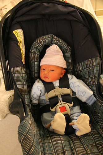 Going Home From the Hospital