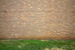 landscaping (xgray) Tags: color brick grass wall digital canon austin eos university texas empty universityoftexas blank 5d nothing canoneos5d ef24105mmf4lisusm uploadx jestercenter