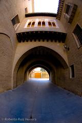 entering the arch (Berts @idar) Tags: zaragoza callejeando casco cascoviejo peleng cascoantiguo espaa peleng8mmfisheye canoneos400ddigital