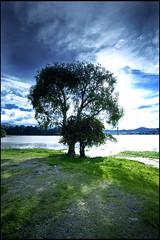 Huasca de Ocampo, HDRi (Shuck) Tags: blue windows sunset sky naturaleza lake tree verde green nature azul mexico arbol atardecer scene hdr hdri hidalgo huascadeocampo tonemapping aplusphoto