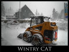 wintry cat (Kris Kros) Tags: california bear winter lake snow tractor storm photography big high dynamic snowstorm machine caterpillar machinery heavy range hdr kkg photomatix 1xp kkgallery