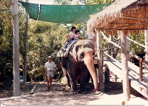 San Diego Wild Animal Park - 1978