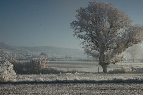 El Desembre Congelat