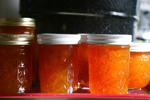 processed jars of kumquat marmalade