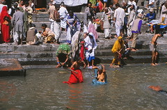 19890300 Nepal Kathmandu People at Bagmati River (j.ardin) Tags: nepal people buddhism menschen gods kathmandu hinduism religions reinigung pashupatinath purification buddhismus holyplace hinduismus ritualbath bagmati holybath waschung